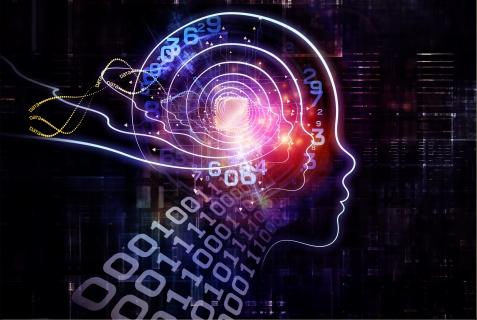 Meditace rozvíjí mozek